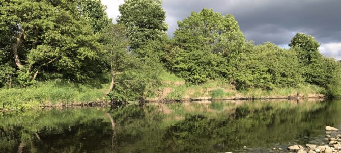 Evening session on the Wharfe